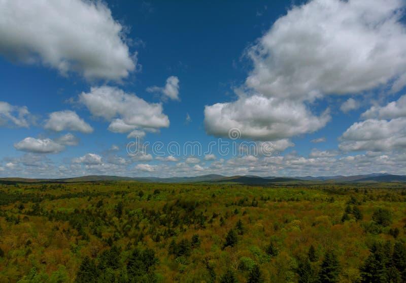 Pocono山夏天绿草和天空蔚蓝风景 库存照片