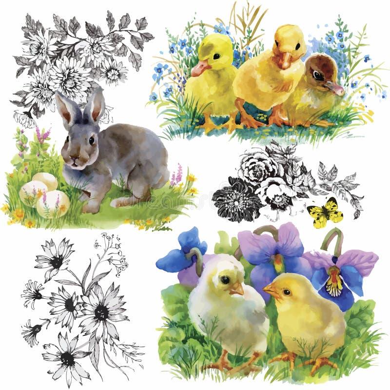 Pocos anadones, pollos y liebres lindos mullidos de la acuarela con el modelo inconsútil de los huevos en el fondo blanco vector  stock de ilustración