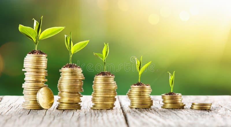 Początkowa inwestycja pieniądze i wzrost gospodarczy zdjęcia royalty free