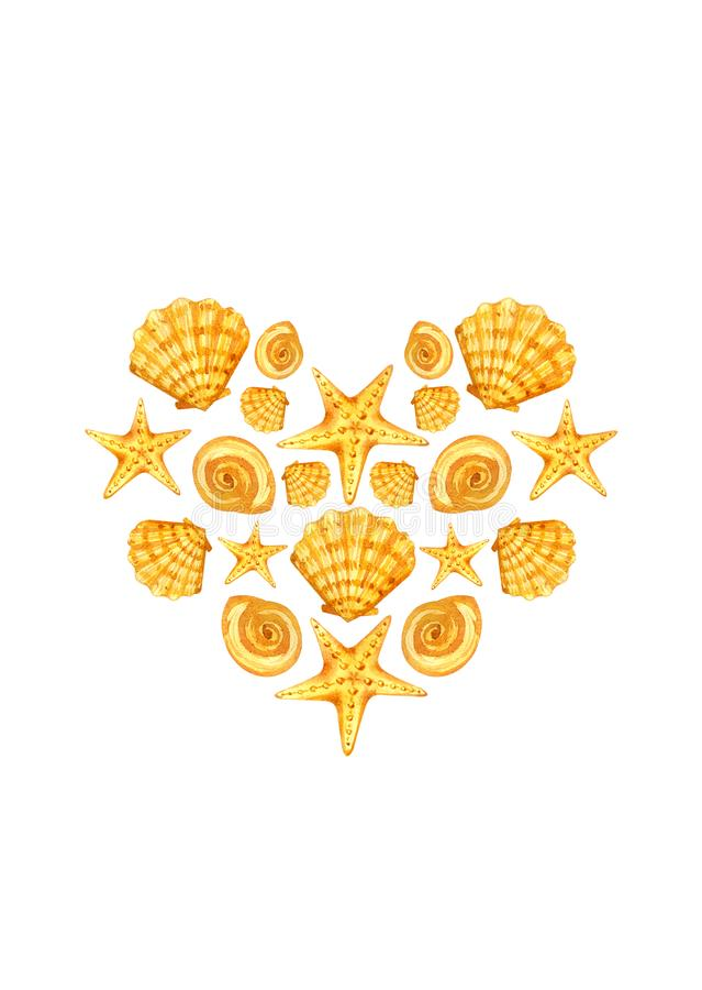 Pocztówkowy serce seashells royalty ilustracja