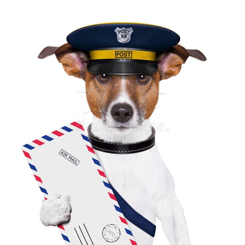 Download Poczta pies zdjęcie stock. Obraz złożonej z paczka, niesie - 28967720