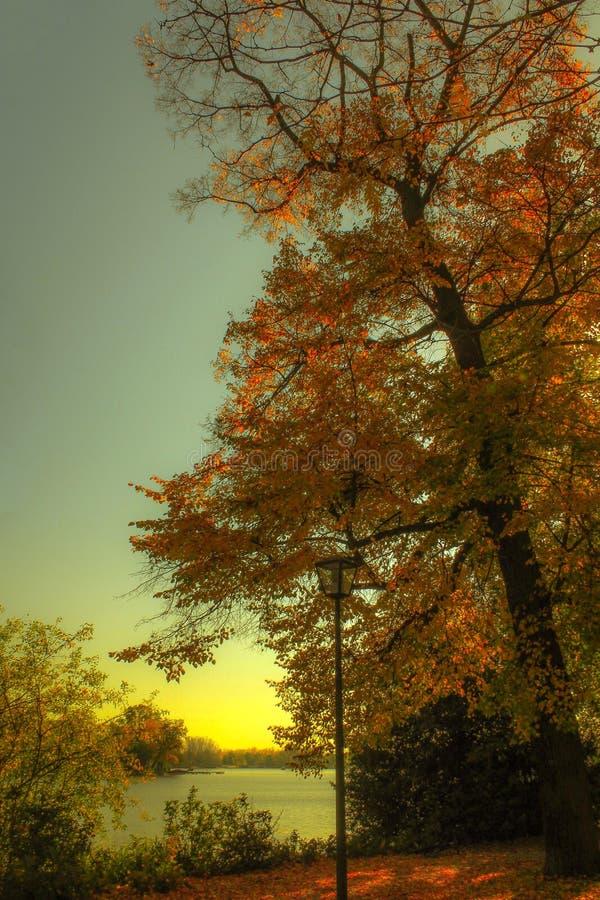 Poczta w jesieni drzew krajobrazie obrazy royalty free