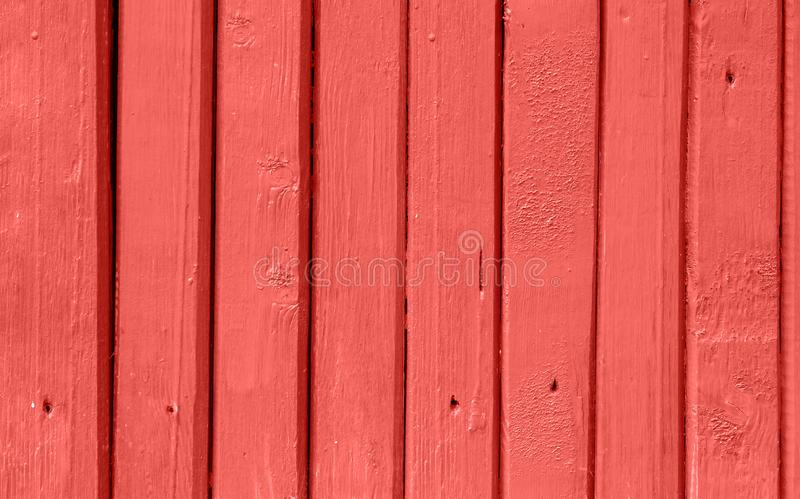 Podławy Wąski deski drewna ogrodzenia tło Jaskrawy Modny Żywy Koralowy kolor Nawierzchniowa tekstura z szczegółów gwoździ dziuram zdjęcia royalty free