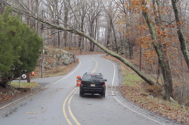 Pod drzewem samochodowy Sandy huraganowy omijanie A zdjęcie royalty free