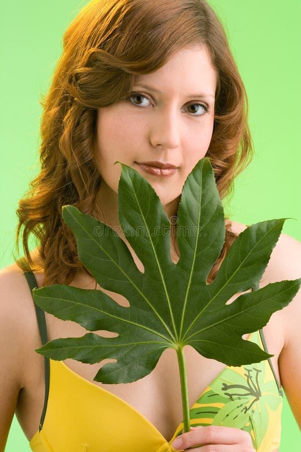podaj jej liść green zdjęcia royalty free