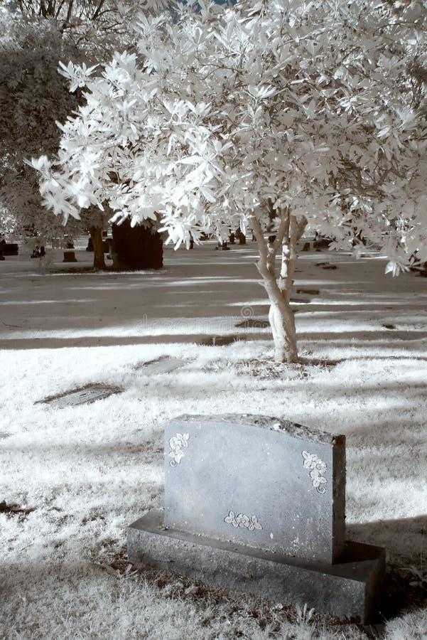 podczerwień cmentarz obraz stock