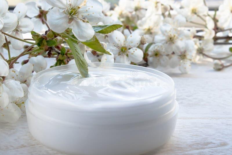 Poder blanca, crema cosm?tica y flores de la cereza en un fondo blanco foto de archivo libre de regalías