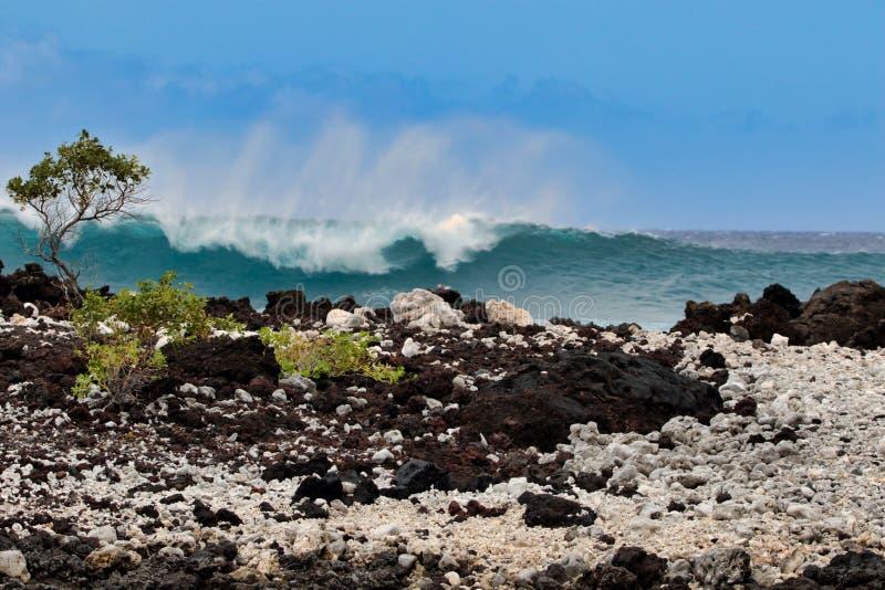 Poder bonito da ressaca na baía de Perouse do La em Maui fotos de stock royalty free