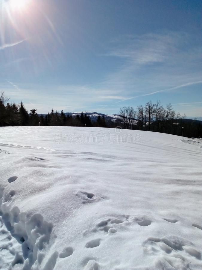 Poder bonito do inverno da natureza fotografia de stock royalty free