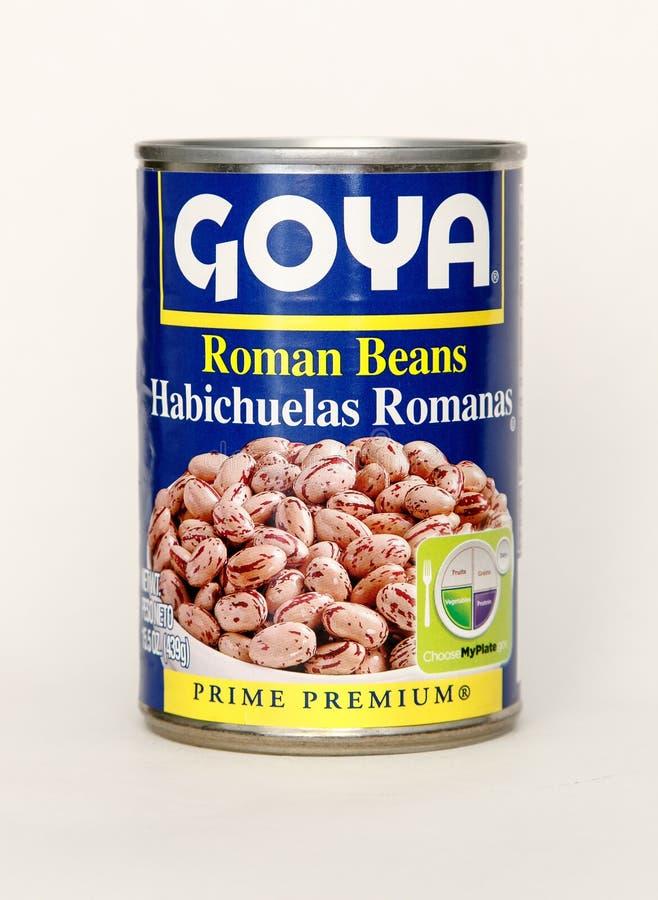 Poder de Goya fotografía de archivo libre de regalías