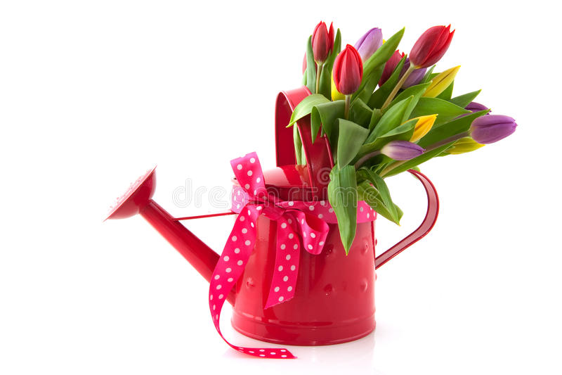 Poder de riego decorativa con las flores fotografía de archivo libre de regalías