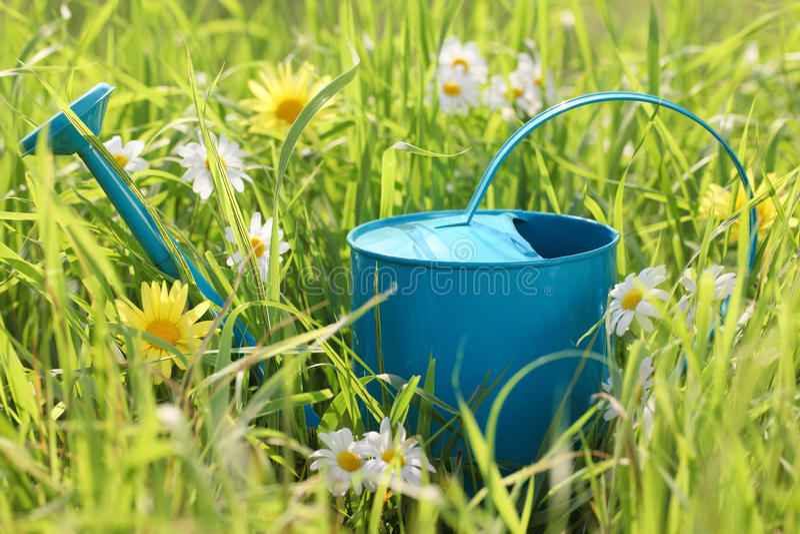 Poder de riego en hierba imagen de archivo libre de regalías