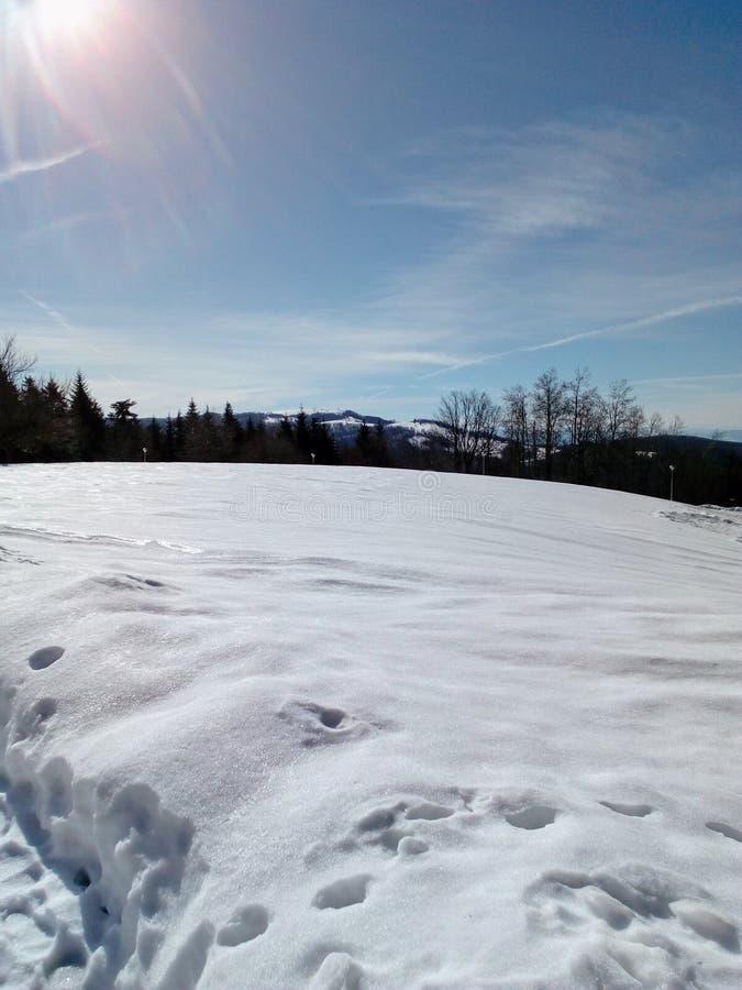 Poder hermoso del invierno de la naturaleza fotografía de archivo libre de regalías