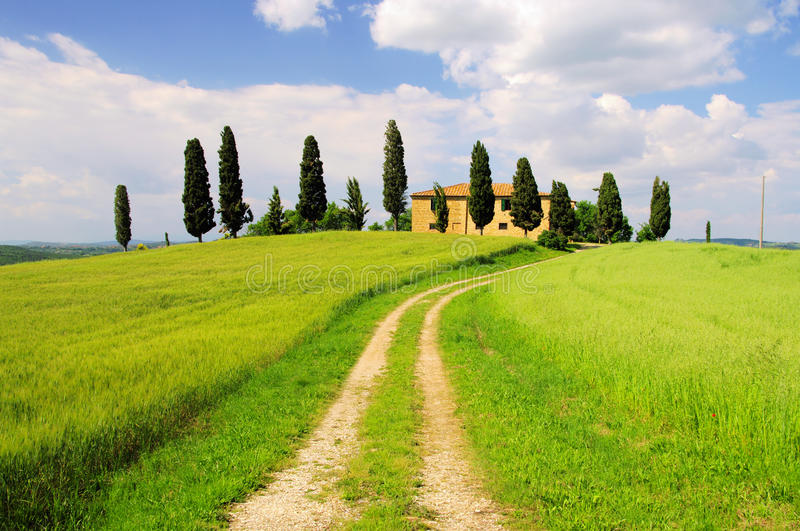 Download Podere stock photo. Image of meadow, field, orcia, hill - 14853290