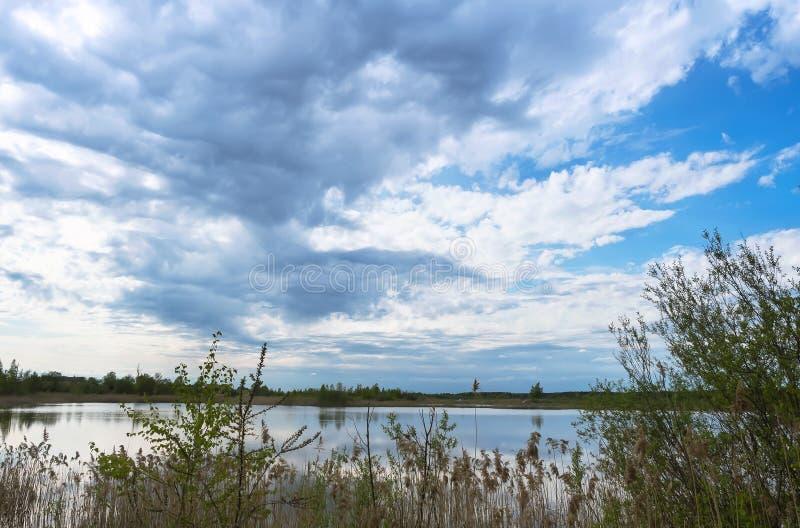 Podeszczowe chmury nad jeziornym, przerastający brzeg staw, inclement pogoda nad stawem zdjęcia stock