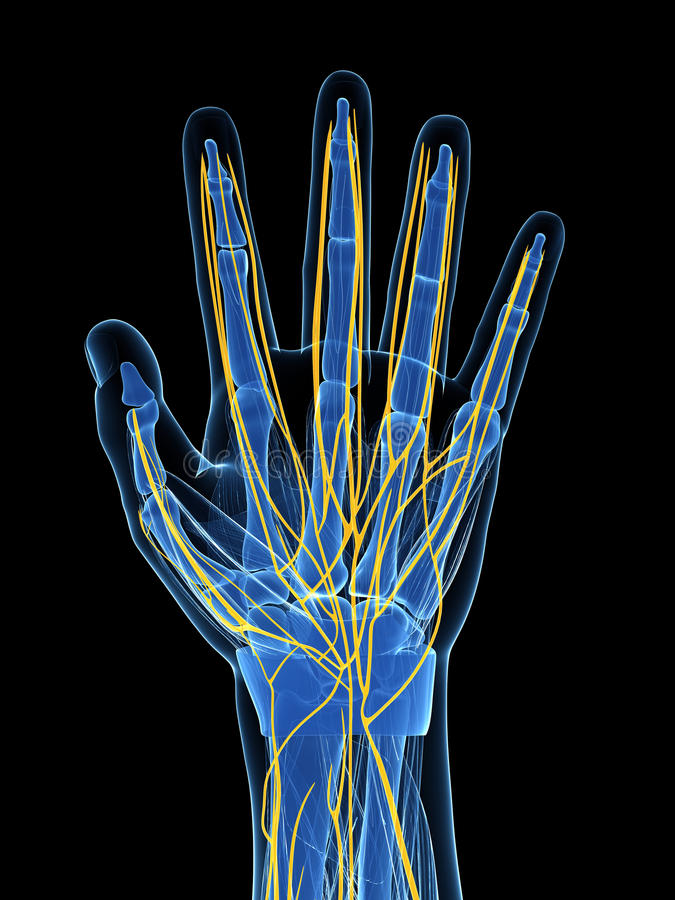 Podkreślający ludzcy ręka nerwy ilustracja wektor