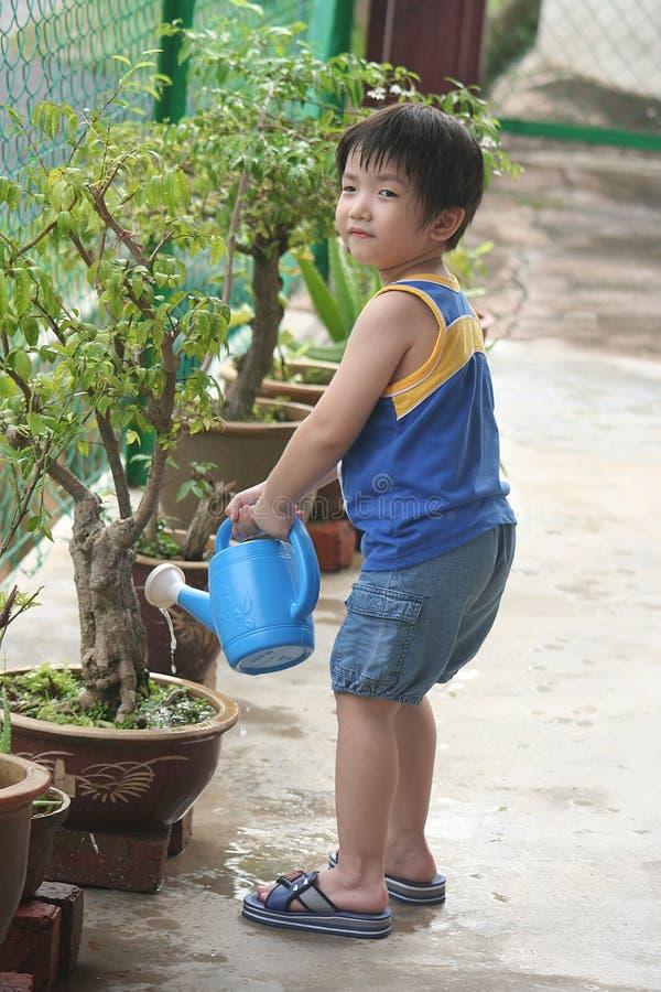 podlewanie roślin chłopca obrazy royalty free