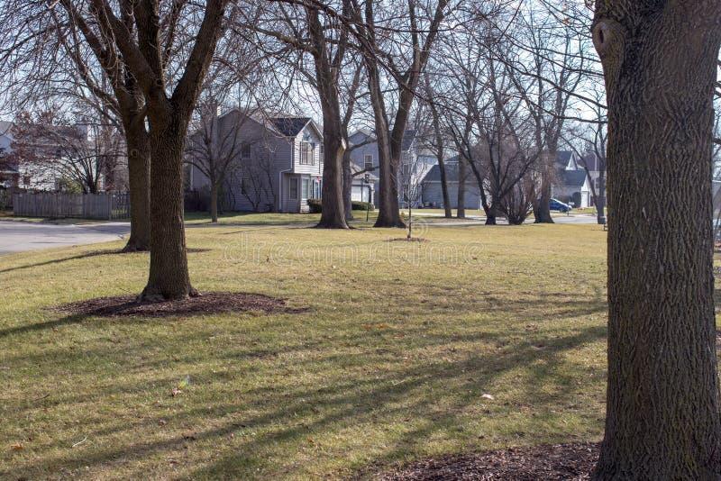 Podmiejski parkowy położenie z drzewami obrazy stock