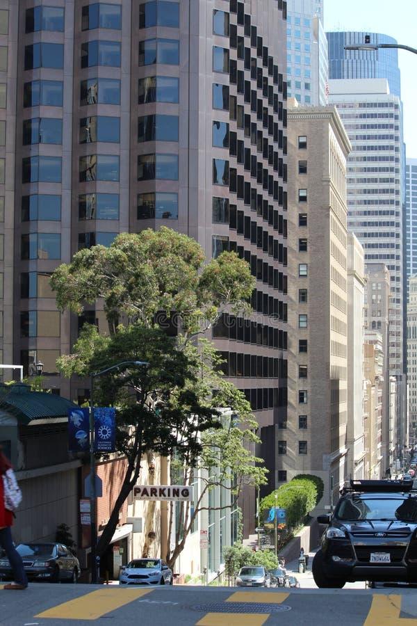 Podobno ruchliwie San Fransisco ulica! zdjęcia royalty free