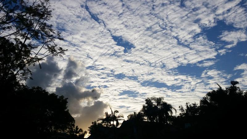 Podpala za sylwetkowymi tropikalnymi drzewami z ogromnym niebieskim niebem z chmurami obraz stock