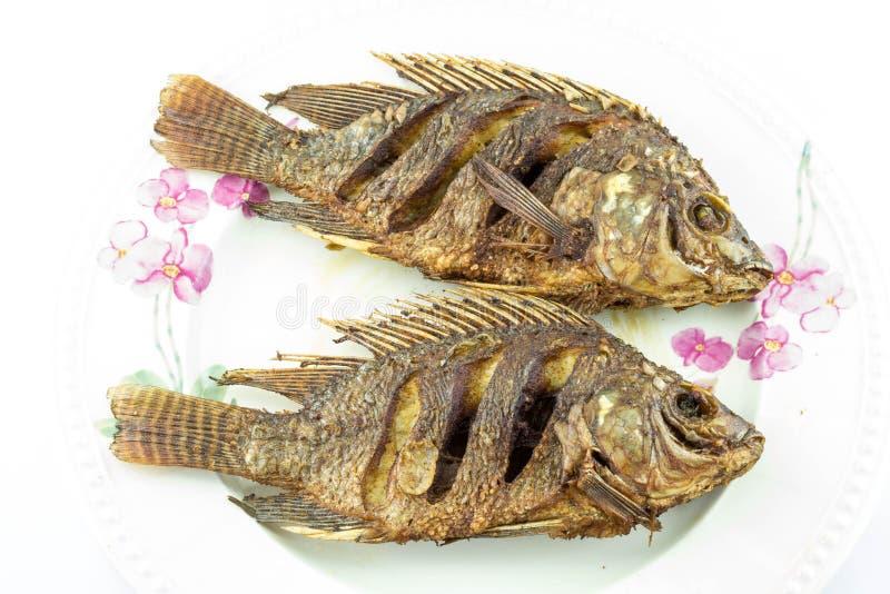 Download Podpalająca ryb obraz stock. Obraz złożonej z smakołyk - 53793125