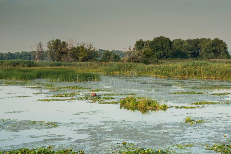 Download Podpalana widok rzeka obraz stock. Obraz złożonej z słońce - 57664777