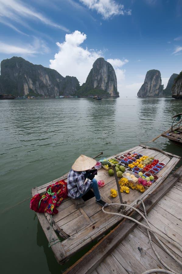 podpalany halong Vietnam zdjęcie royalty free
