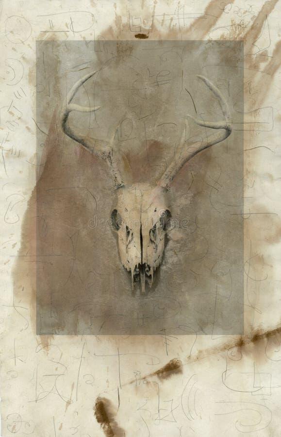 podpisz czaszkę jelenie ilustracja wektor