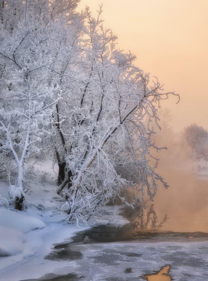 Podróż przez Syberia Zmierzch na bankach jezioro obraz stock