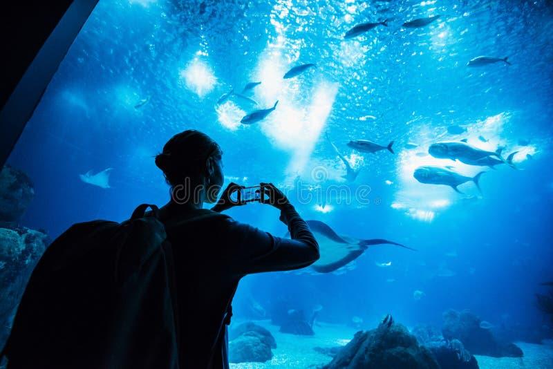 Podróżnik kobieta bierze obrazki w akwarium na mądrze telefonu, podróży i aktywnego styl życia pojęciu, obrazy royalty free