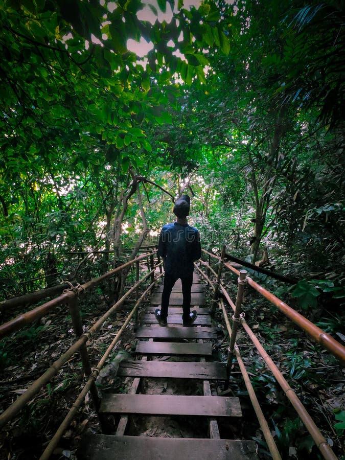 Podróżnik W Pięknym Szlaku Małp W Krabi obrazy royalty free