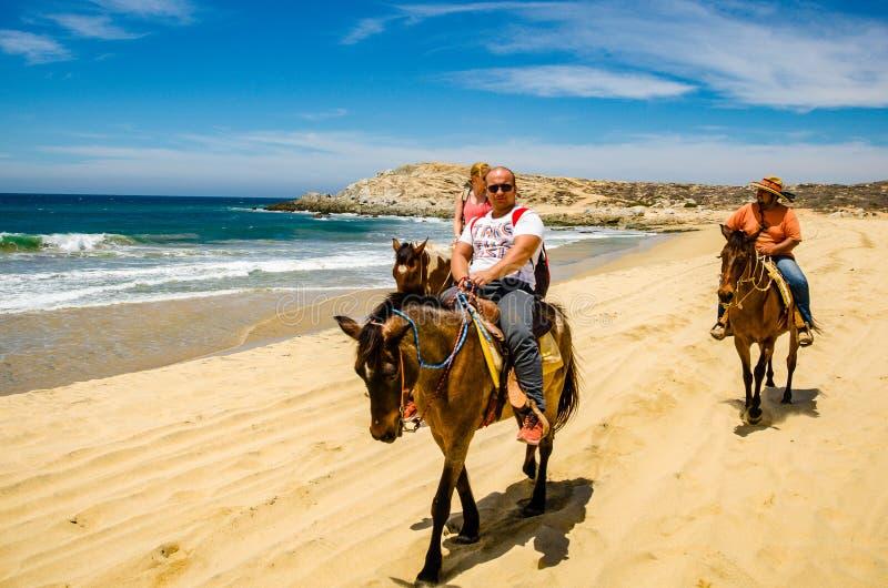 Podróżnika horseback jazda w Cabo San Lucas obrazy stock