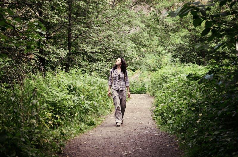 Podróżny kobiety odprowadzenie wzdłuż drogi w parku obraz stock