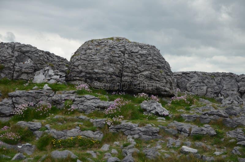Podróżować przez pięknego Irlandia w wiośnie 2016 zdjęcie royalty free