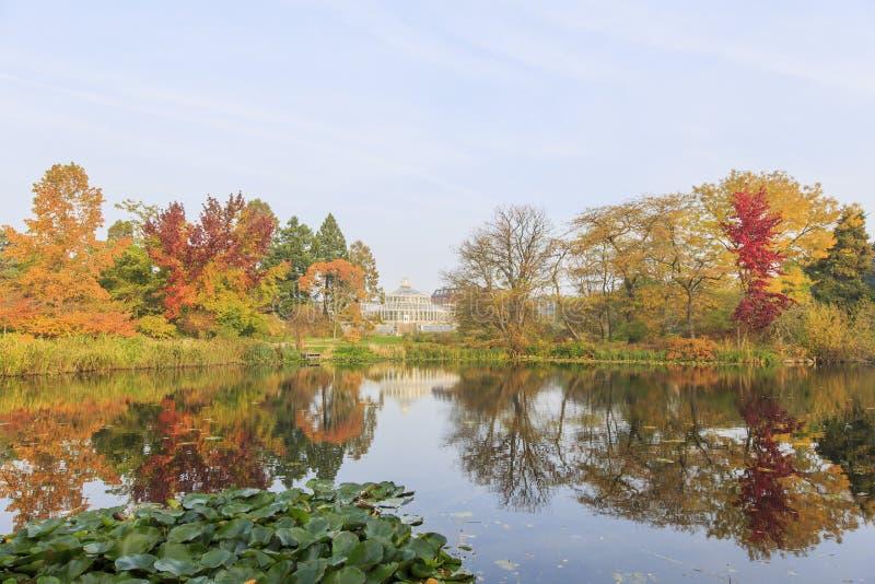 Podróżujący w sławnym ogródzie botanicznym, Kopenhaga fotografia stock
