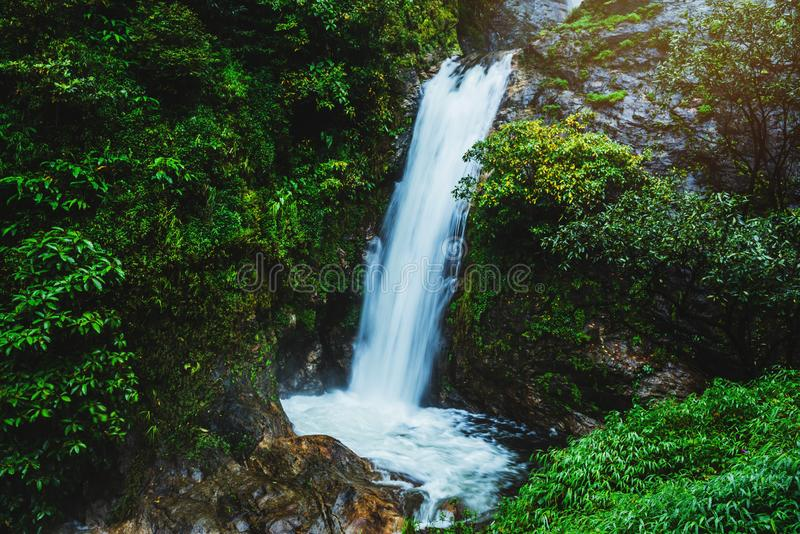 Podróżuj nad najwyższym wodospadem w deszczowym sezonie wodospadowym w Chiangmai Mae zdjęcia stock