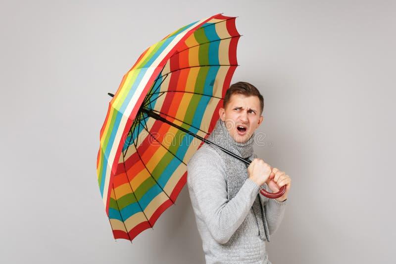 Podrażniony młody człowiek w szarym pulowerze, szalik trzyma kolorowego parasol na popielatym tle w studiu Zdrowy obraz stock
