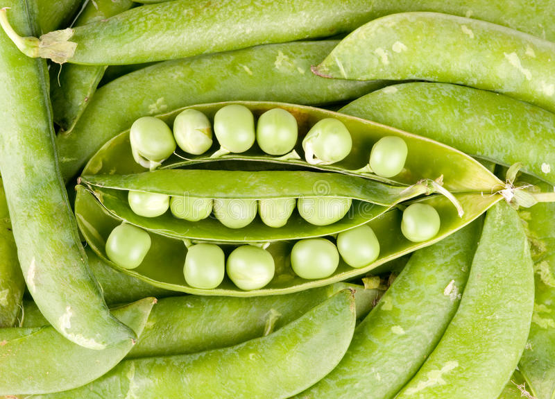 Pods Of Green Peas Royalty Free Stock Image