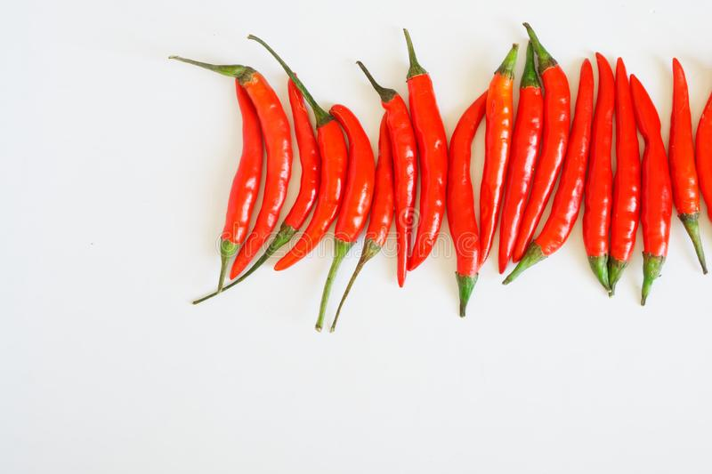 Pods of red chili peppers lie on a white clean surface. Seasoning and healthy food. Free space for inscriptions. Daylight stock photo