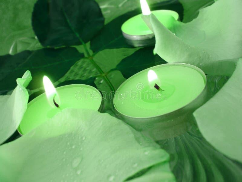 podstawą spa zielone obraz stock