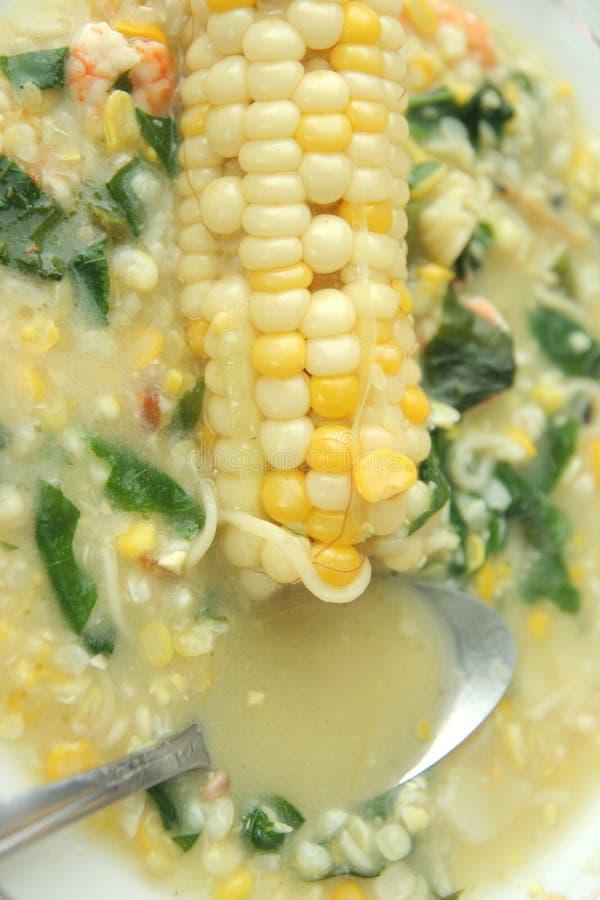 podstawowy kukurydzany karmowy zdrowy obrazy stock
