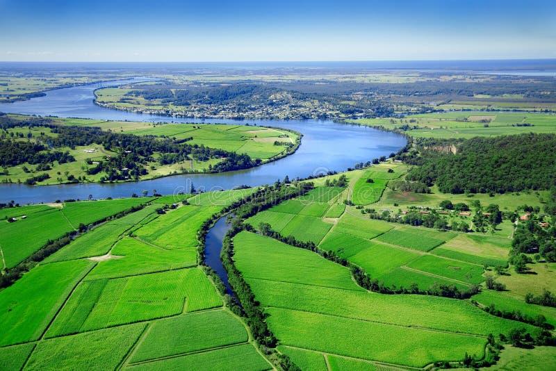 podstawy powietrznych kukurydzy obrazy royalty free