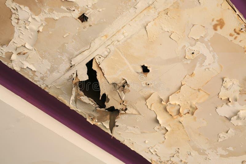 Podsufitowych panel dom uszkadzający od deszczówka przecieku fotografia stock
