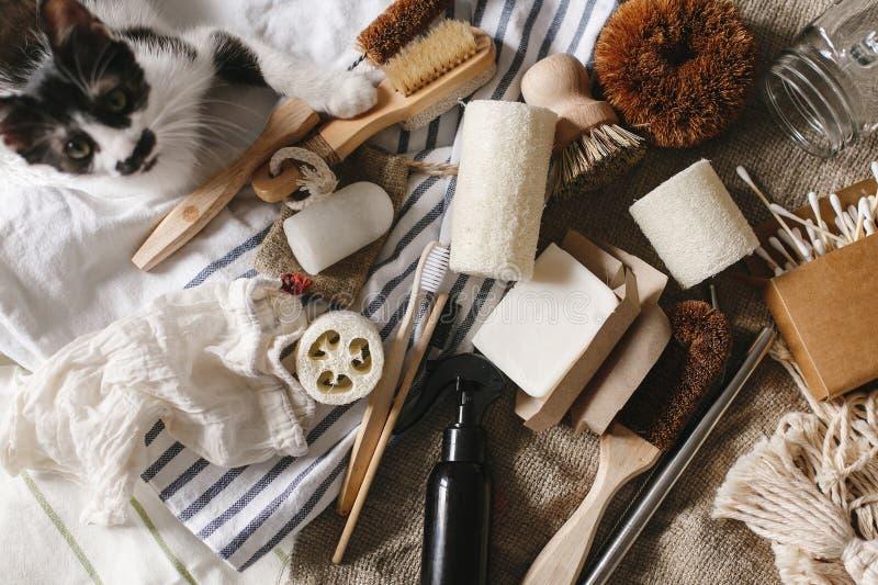 Podtrzymywalny stylu życia pojęcie kota i eco naturalny bambusowy toothb obraz stock