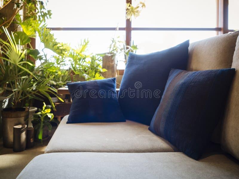 Poduszki na kanapy siedzeniu w Żywym pokoju z okno obraz stock