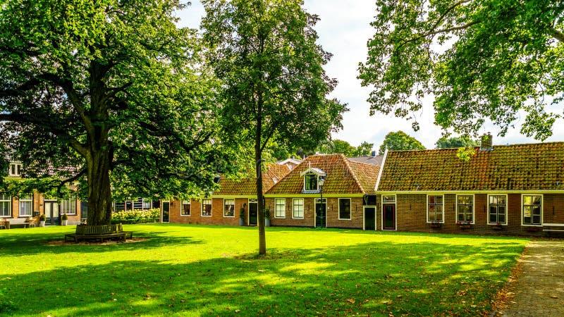 Podwórze z trawą i starymi drzewami w historycznej wiosce Midden Beemster Dębowymi i Cisawymi obrazy royalty free