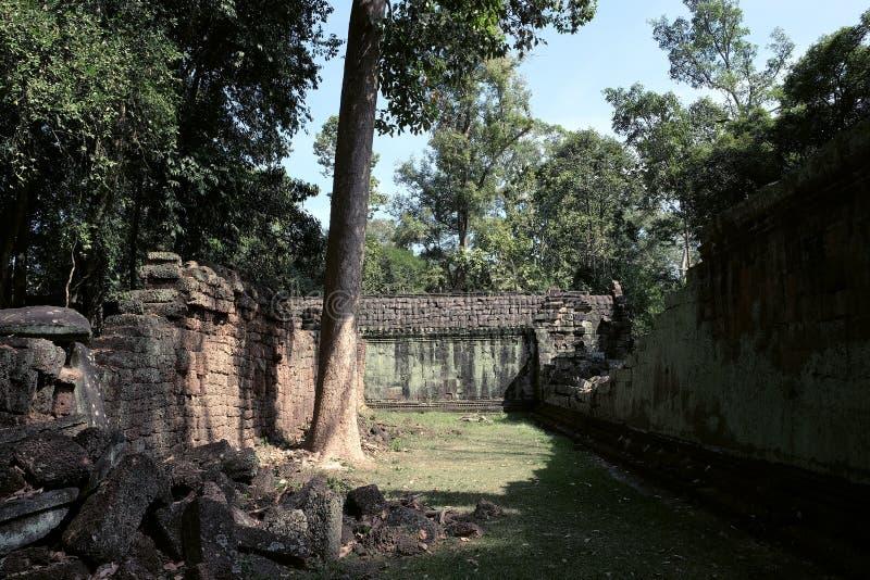 Podw?rze obdrapany ?wi?tynny kompleks w Indochina Antyczne ruiny w lesie fotografia stock