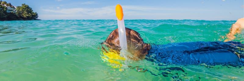 Podwodna natury nauka, chłopiec snorkeling w jasnym błękitnym dennym sztandarze, DŁUGI format obrazy royalty free