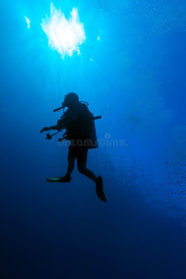 Podwodna scena z sylwetką akwalungu nurek zdjęcie royalty free