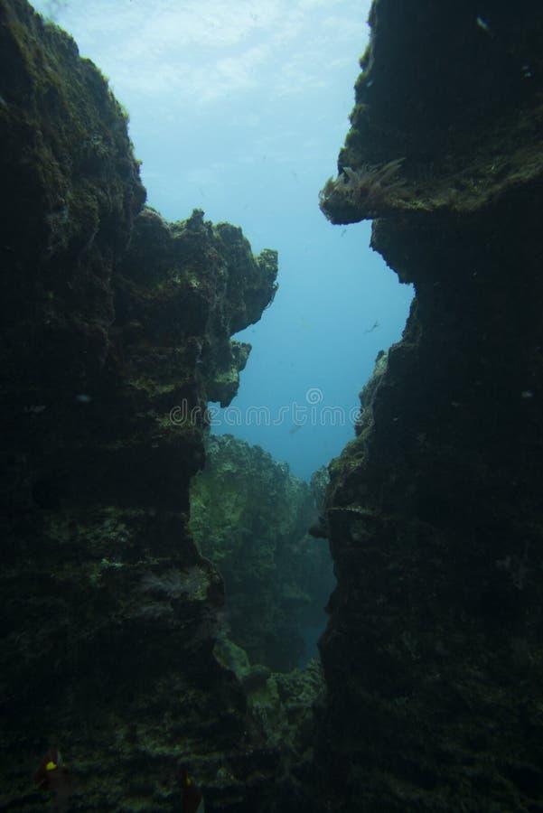 Podwodny jar fotografia royalty free